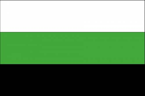 флаг зеленый белый черный